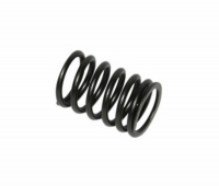 Valve spring outside China 4 stroke GY-6 Kymco 4S