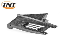 Motorscherm Voor R Peugeot Speedfight Tnt Carbon